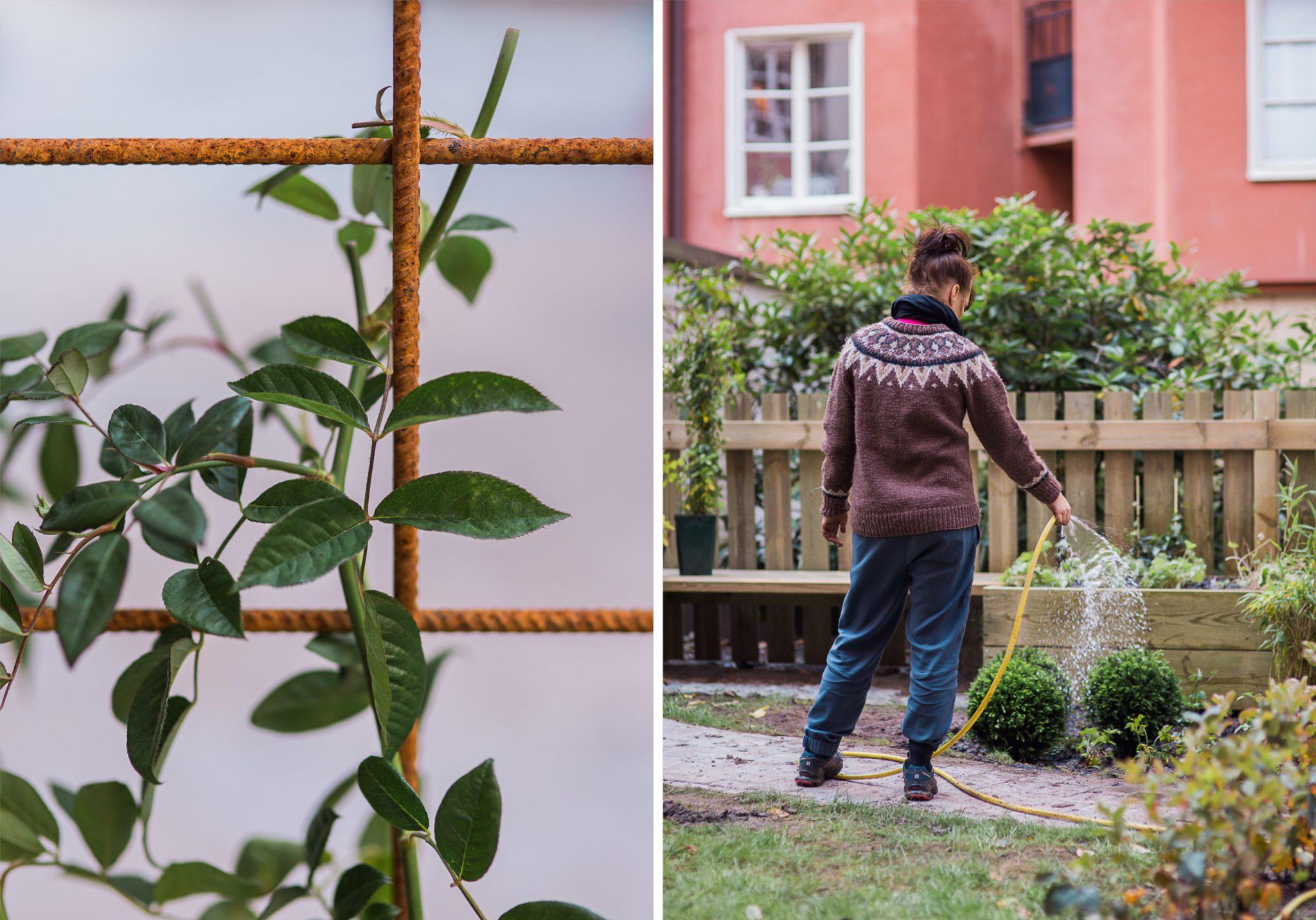 Garden-branding-Stockholm3