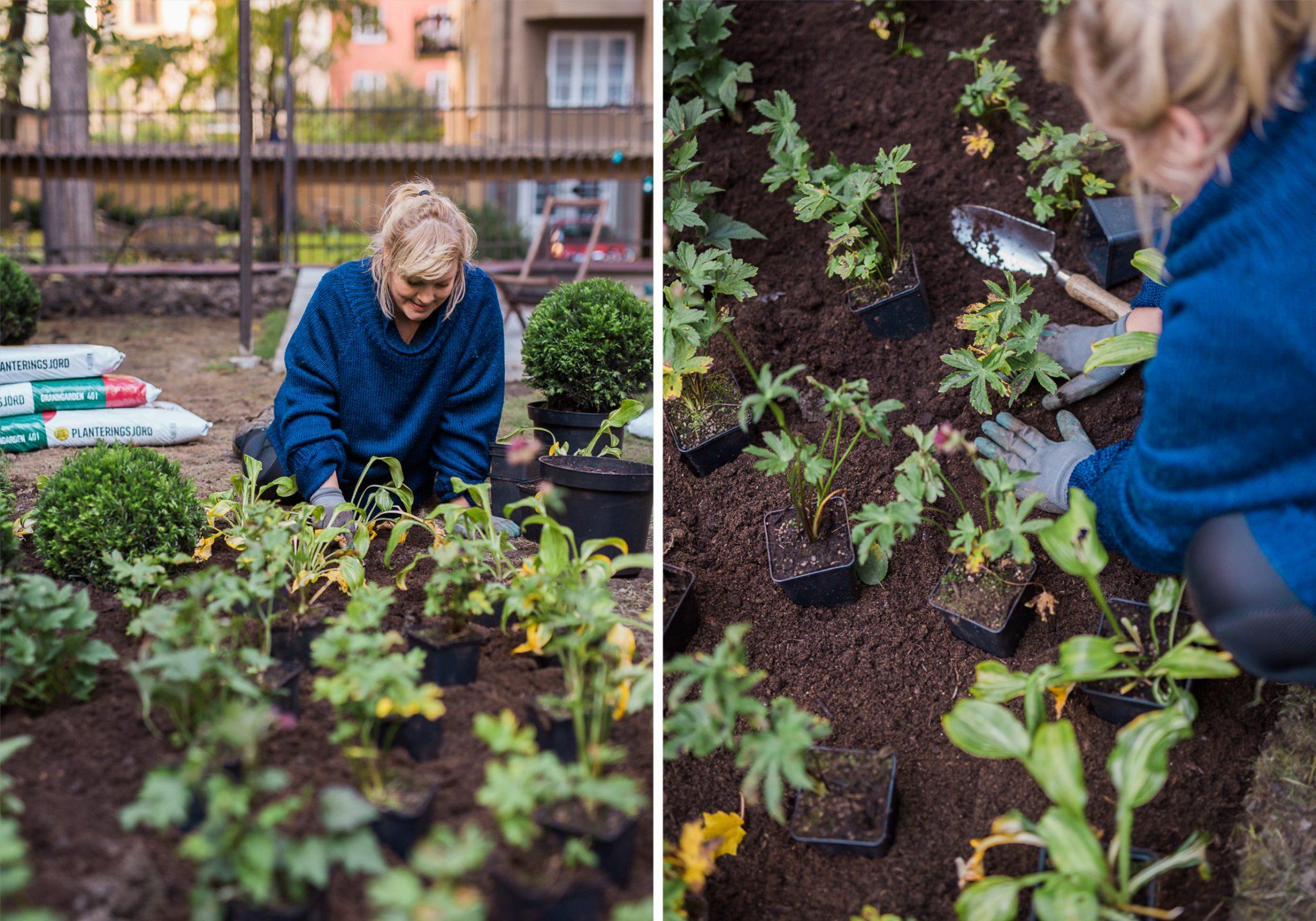 Garden-branding-Stockholm4